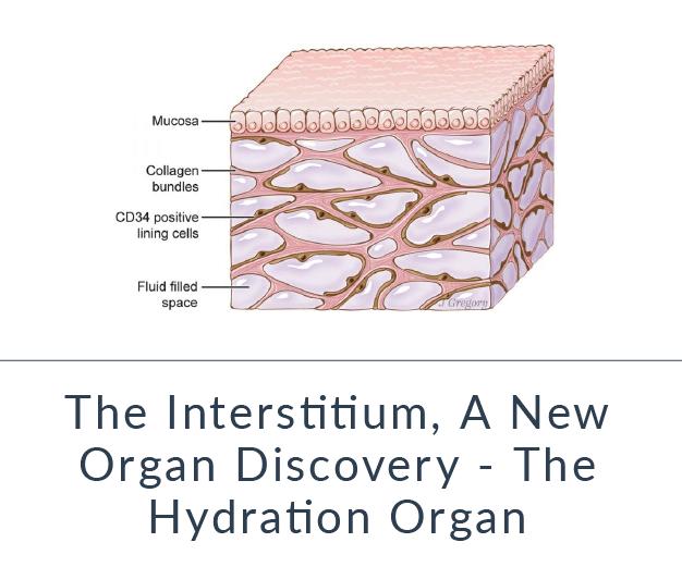 https://tuningelement.com/interstitium-new-human-organ-discovery-hydration-organ/